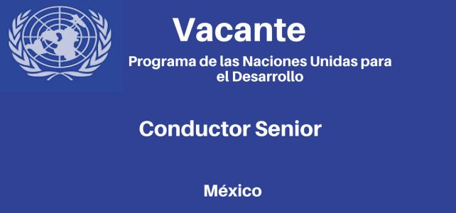 Vacante Conductor senior PNUD