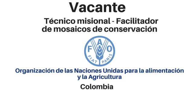 Vacante Técnico misional – Facilitador de Mosaicos de Conservación FAO
