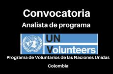Convocatoria Analista de Programa VNU