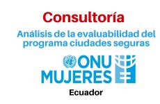 Consultoría para el análisis de la evaluabilidad del programa ciudades seguras para mujeres y niñas ONU Mujeres