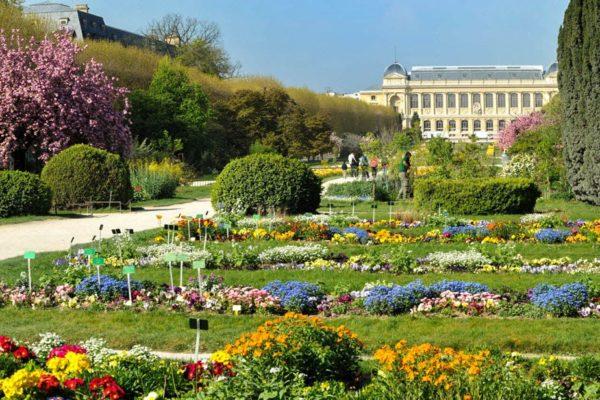 jardin_plantes_paris