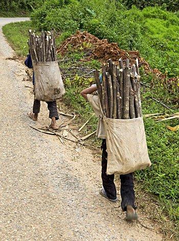 O trabalho infantil
