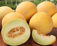 http://mundoeducacao.bol.uol.com.br/upload/conteudo/melon.jpg