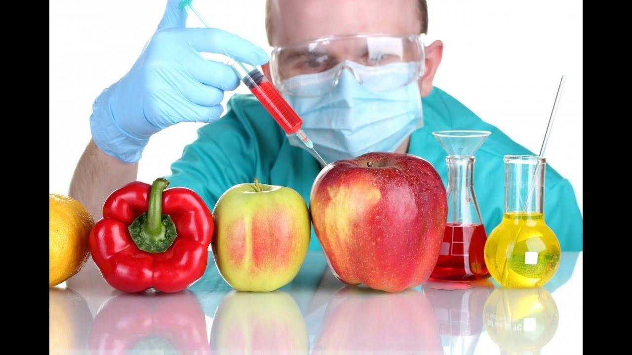Resultado de imagem para Alimentos transgênicos