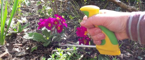 Image is a photograph of an elderly person's hand, gripping the easi-grip cultivator whilst turning soil in a flowerbed outdoors