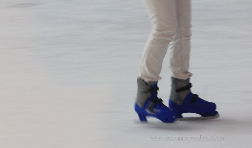 Legs of Dubai Ice Rink 6
