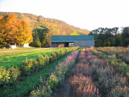 October - Mountain View Farm, Easthampton, MA
