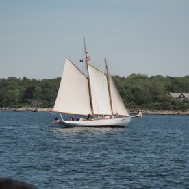 Sailboat — copyright Trace Meek