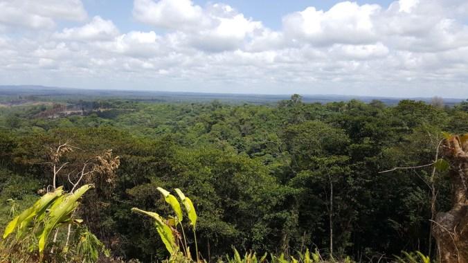 région de cacao, paysage