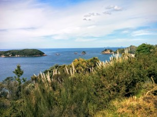 Gorgeous view from the start of the walk into Cathedral Cove