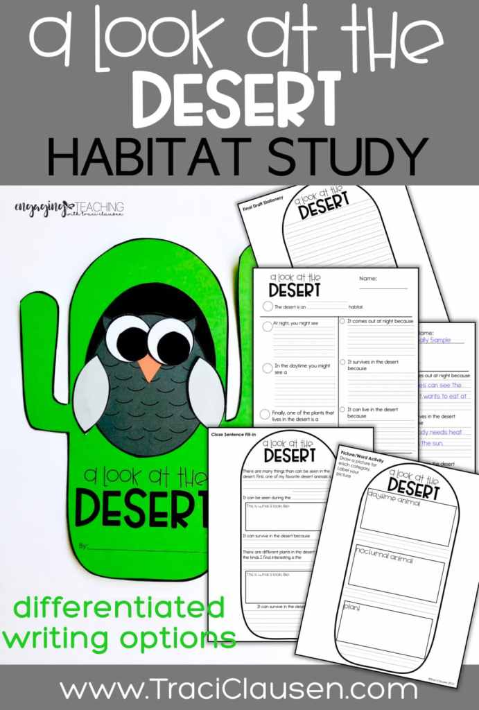 Writing choices for desert and owl craft