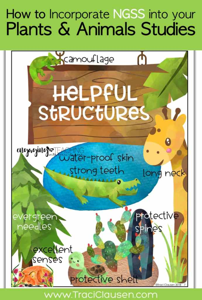 1st Grade Life Science NGSS Helpful Structures