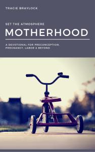 Set the Atmosphere Motherhood Edition
