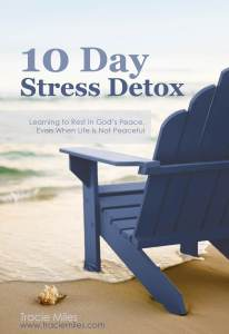 10 Day Stress Detox ebook cover Final