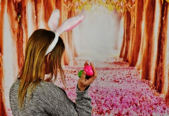 Bunny Tracker