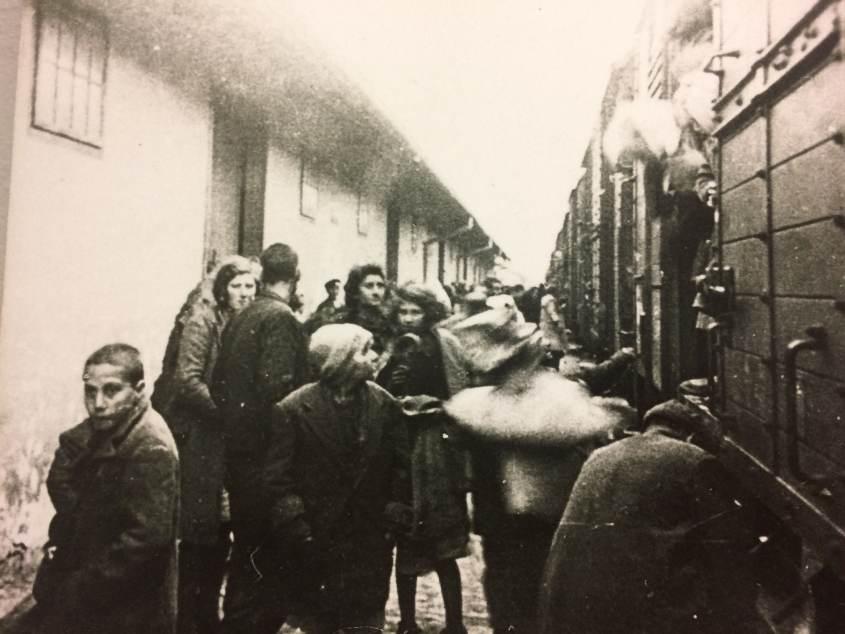 Roger Hallam co-fondatore di XR è stato accusato dal settimanale tedesco DIE ZEIT di essere un antisemita. Hallam ha infatti detto che il genocidio degli ebrei d'Europa è l'ennesimo riproporsi di uno schema storico. Il riferimento ai genocidi coloniali in Africa è d'obbligo. L'intera questione riguarda l'urgenza culturale e politica di inserire la catastrofe ecologica in una storia della civiltà umana.
