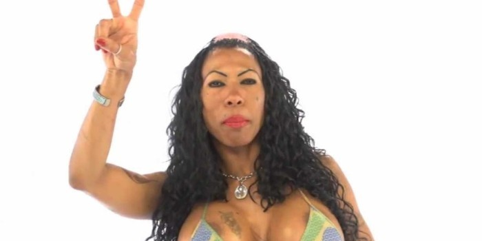 Inês Brasil ganha perfil no Grammy Amplifier após campanha ...