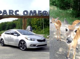 2014 Kia Forte SX Review