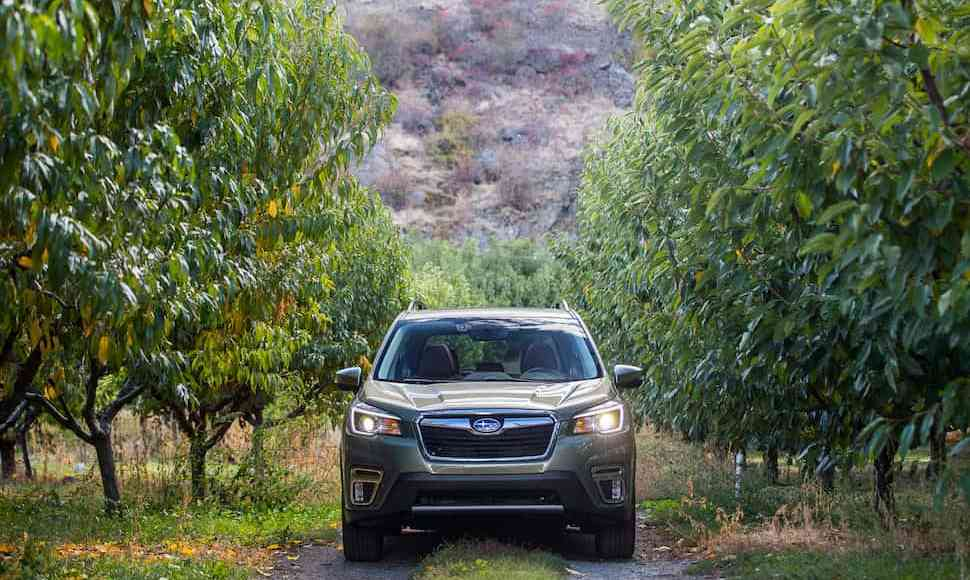 2019 subaru forester off roading in mountains