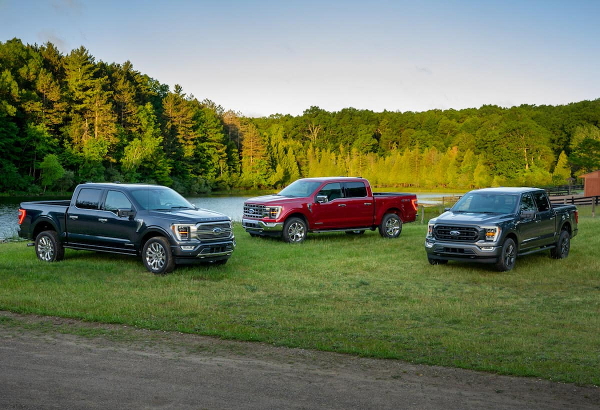 2021 Ford F-150 lineup