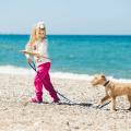 Come insegno al mio cane a non avere paura dell'acqua?