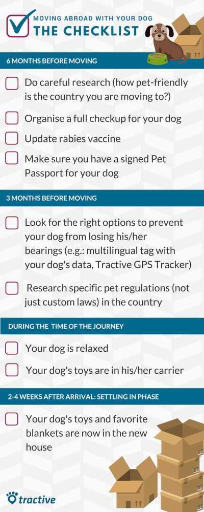 moving abroad with your pet: a checklist