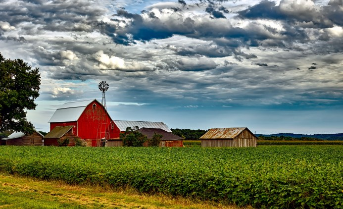 Farm scene summer red barn