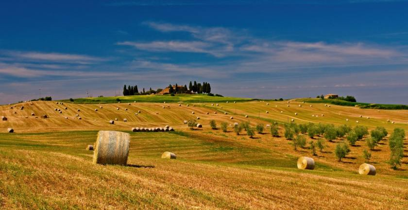 agriculture-bale-countryside-575576