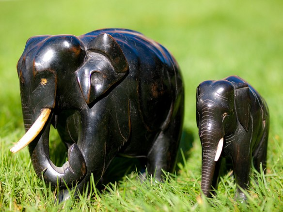 Carved elephants by William Warby