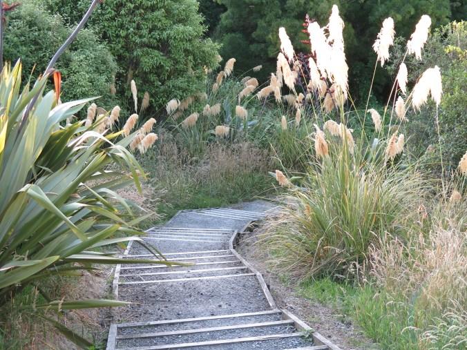 Local nature trail