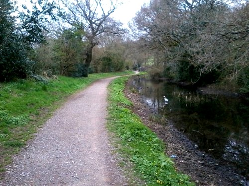 The canal towpath is one of the few flat places to run in hilly ewport