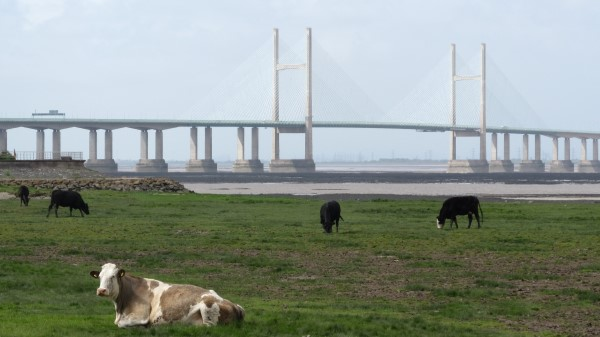 We crossed the original Severn Bridge then walked miles to the imaginatively-named Second Severn Bridge