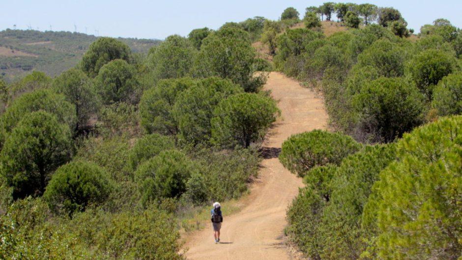 The tough undulating terrain of the Via Algarviana