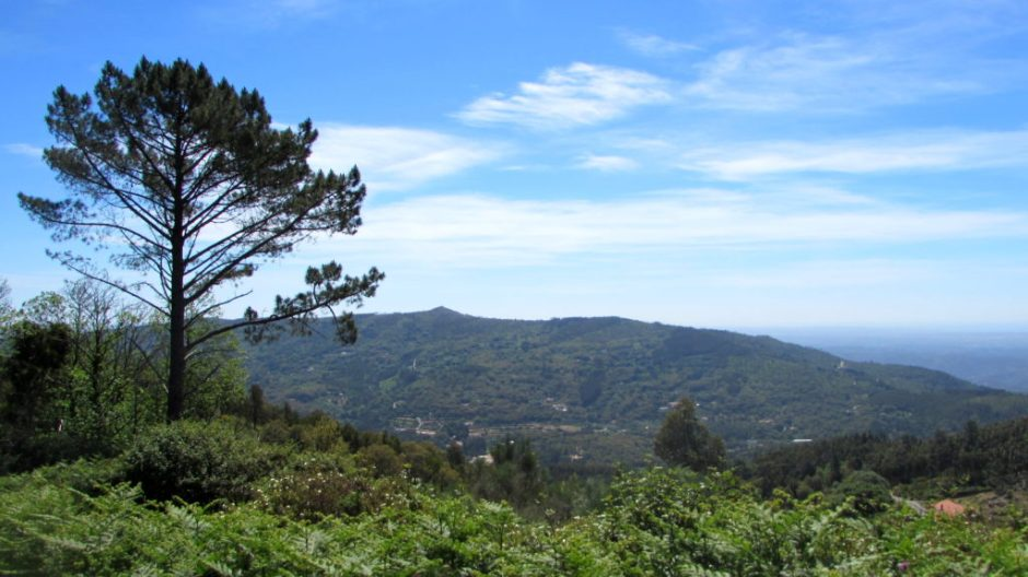 The breathtaking scenery of the Serra de Monchique (looking inland)