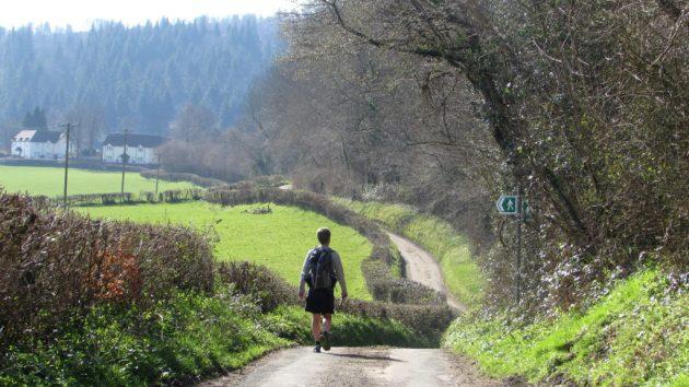 Walking along a tranquil lane near Draethen