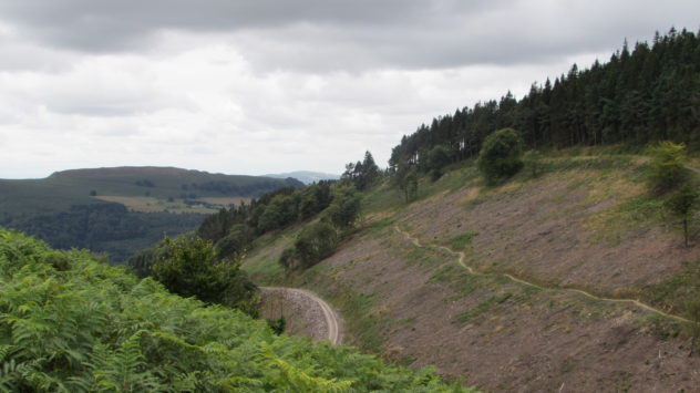 Cwmcarn Forest, Risca, Caerphilly, South Wales