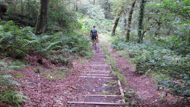 Rhymney Valley Walk, Cefn Onn country park, Lisvane,