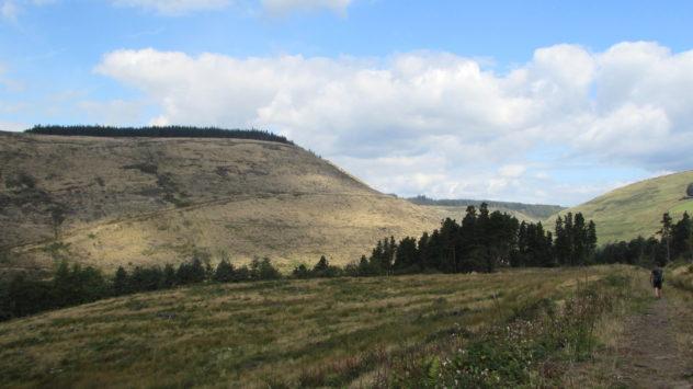 Afan Argoed Forest