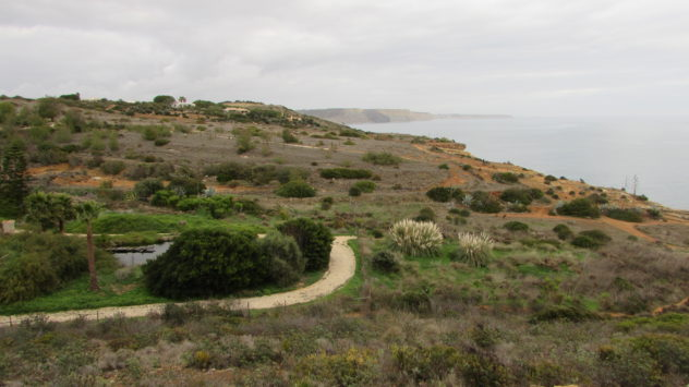 Near Praia da Luz, Western Algarve, Portugal