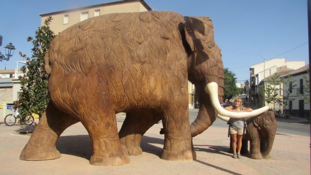 Woolly mammoth, Padul, Lecrin valley, Granada