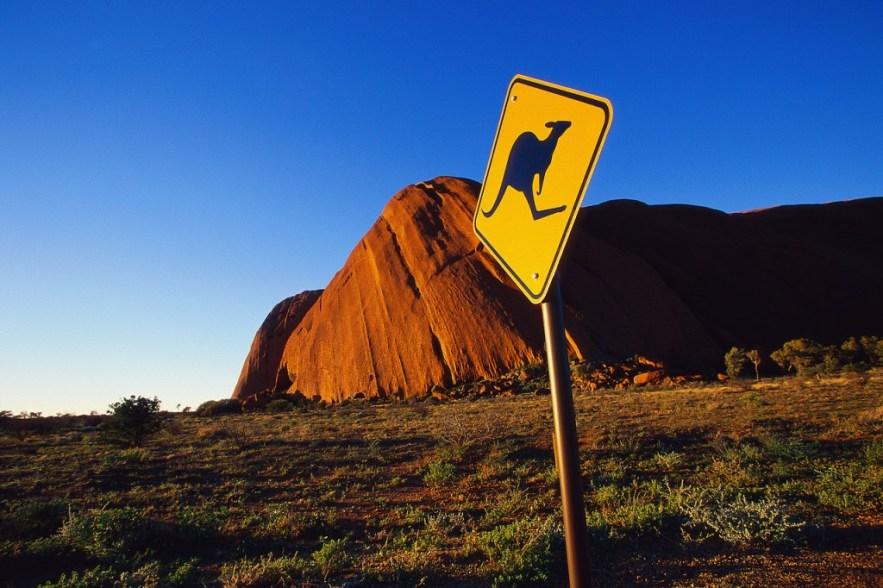 Kangaroo Crossing Sign at Olga Rocks