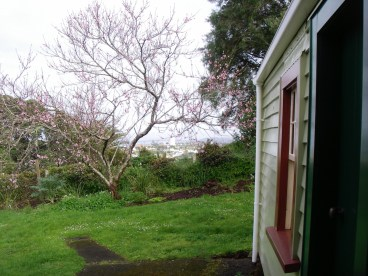 View from outside writing studio