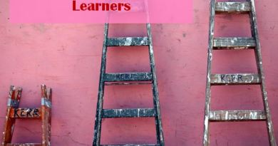 Levels of Self-directed Learners