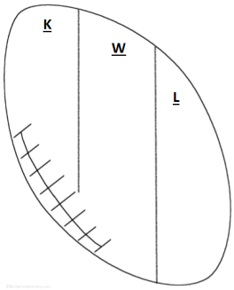 KWL chart in football shape -free pdf