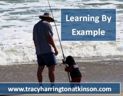 Lifelong Learning by Example