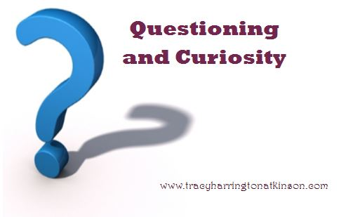 Questioning and Curiosity