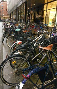 Aarhus 1 bikes
