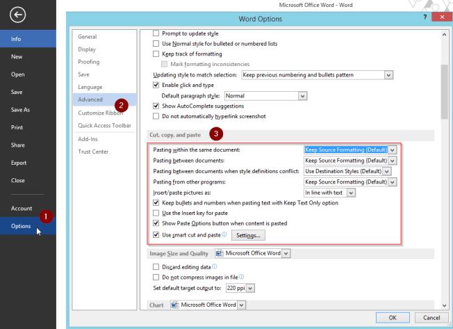 WordConfigurePasteOptions1
