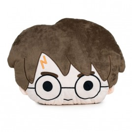 HARRY POTTER - Harry Potter Pillow
