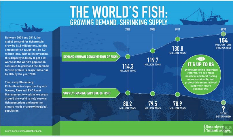 A primer on Fishmeal 7